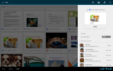 Google Drive3