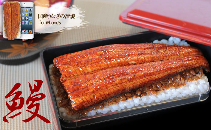 Unagi-iPhone-5iPhone-5s-Case