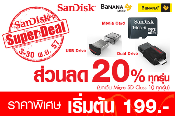 Benner Web SanDisk Flash banner
