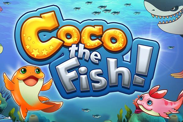 Coco the Fish