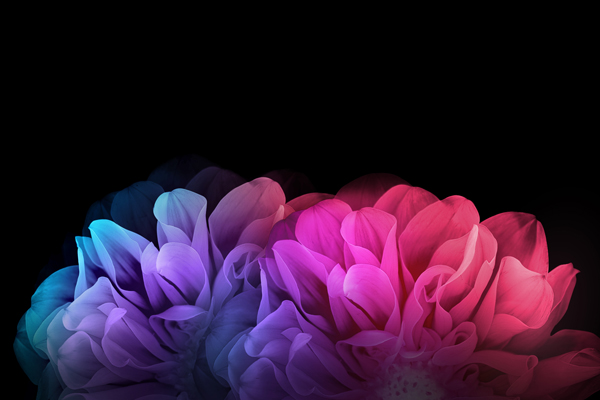 LG-G-Flex-2-full-res-wallpapers_2